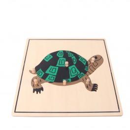 Montessori Premium : Puzzle de la tortue
