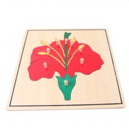 Montessori Premium : Puzzle de fleur